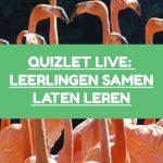 Quizlet Live: leerlingen samen laten leren